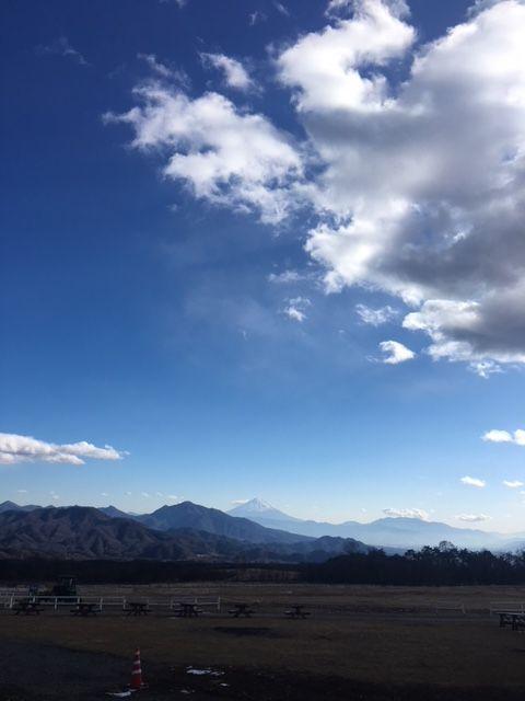 昼の富士を望む