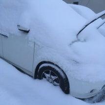 こんな雪でも!