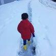 雪道を真剣に歩く