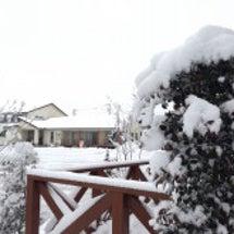 雪をおろしましょう