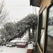 雪でレッスンお休みで…