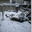 大雪と昭和レトロな和…