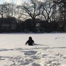 雪だ!!! #クロスポイント吉祥寺#キックボクシング#雪の記事より