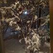 大雪、そして雪掻き