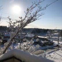 大雪の朝。