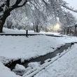 雪景色 自由が丘~九…