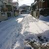 雪かき/白梅短大15回目(ラスト)の画像