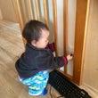 1歳のアクティブラー…