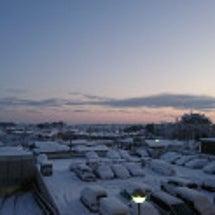 めっちゃ雪