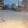 大雪から『えんじぇるちゃん』降臨の画像