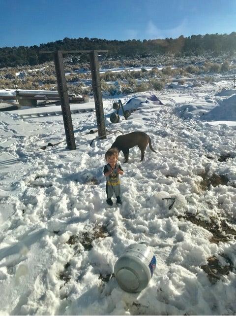 「Colorado Juceman33」の画像検索結果