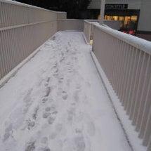 東神奈川 大雪 4年…