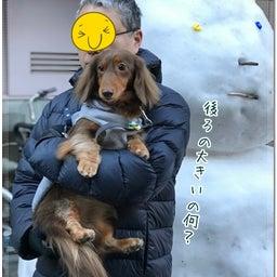 画像 雪のあとは☆ の記事より 5つ目