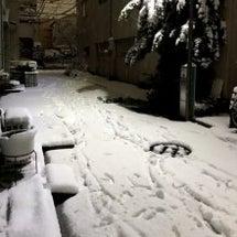 大雪の日に手術でした