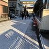 大雪(*´Д`*)の画像