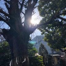 4/1(日)【開運神…