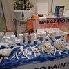 アレスシックイ琉球を販売する(株)仲里ペイントさんの展示ブースにお邪魔致しましたの画像