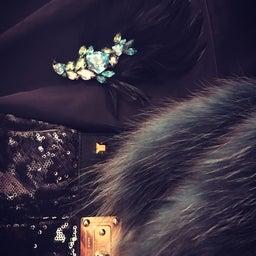 画像 【秋の夜長に♡】羽とキラキラ♡ダイヤモンドの魅惑 の記事より 13つ目