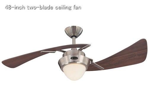 48-inch two-blade ceiling fan