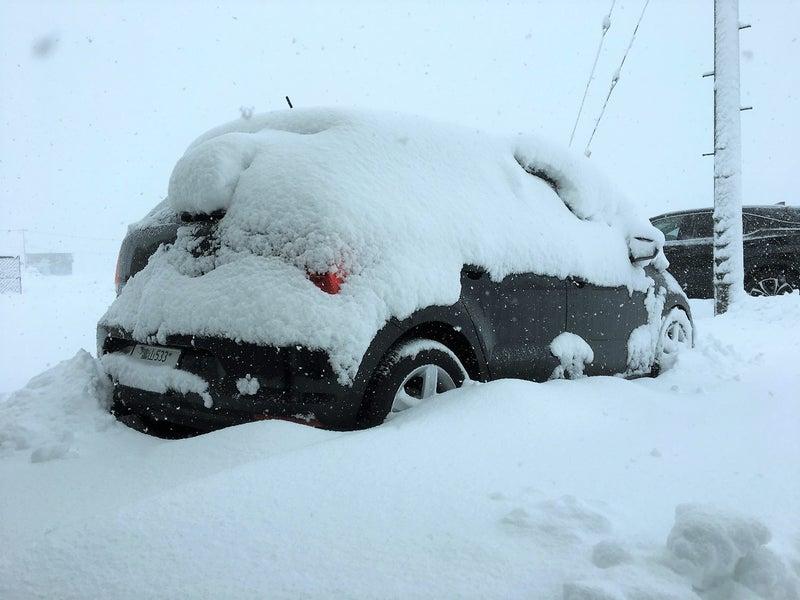 大雪で埋もれてしまったポロ、これじゃあカーケアどころじゃない