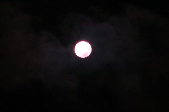 1月31日は、ブルームーンの皆既月食!の記事より