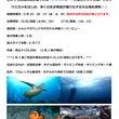 「沖縄ダイビング」の…