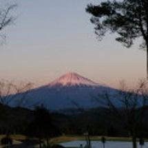 富嶽ハーフラウンドレ…