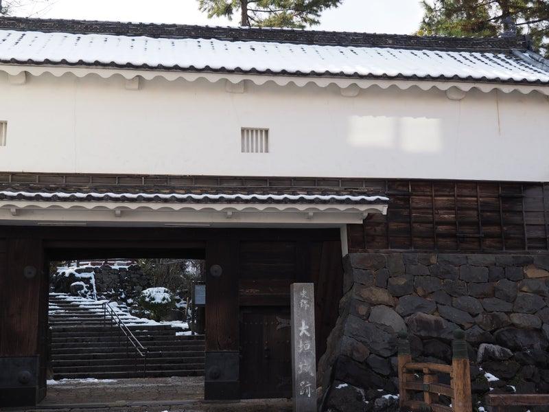 冬の大垣城2018-2