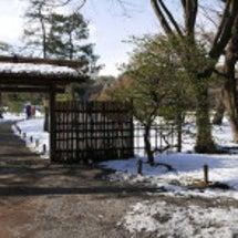 雪の六義園