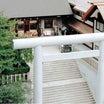 東京のお伊勢さん。周りには神社仏閣が多いんです。&今日のたらこといくら