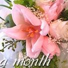 月1コースについてお知らせです♪ ~Once a month PetitPrune~の記事より