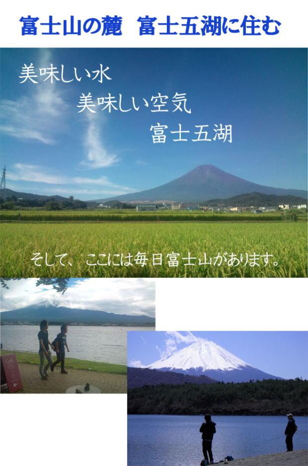 富士山の麓 富士五湖に住む 田舎暮らし、リゾート、2地域居住