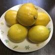 ツヤツヤ レモン酢