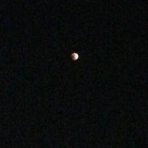 月食見たあー