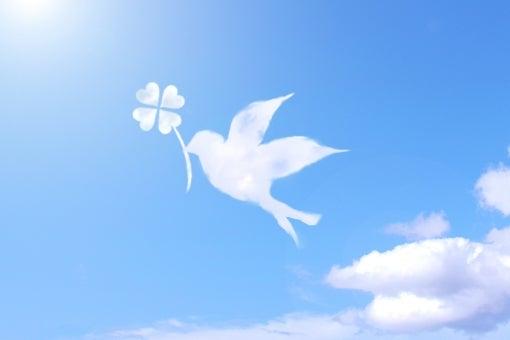 【出産準備にオススメ】お得な特典付き☆ニューボーンフォト撮影の記事より