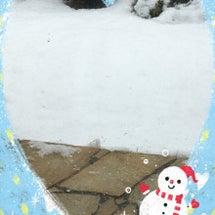 *雪・雪・雪!!*