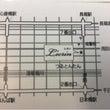 2/4(日)【OSA…