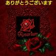 Rosarium 1…