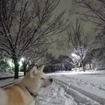 雪でしたね(^_^;…