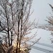 ここは、雪国?!九州…