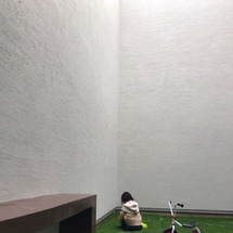 中庭の改造