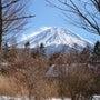 富士山が見える土地を…