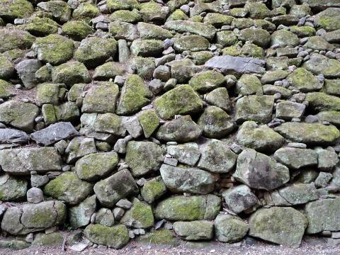岡崎城青海堀の中の石垣