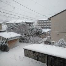 松江市も積もり始めま…