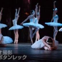 「バレエの撮影」なら…