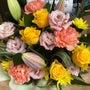 お祝いのお花&イラス…