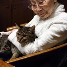 母を老人ホームに入居…