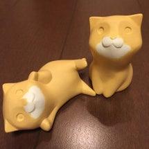 製作中のネコ 第四弾