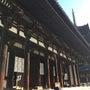 奈良 興福寺 パワー…