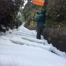 毎日×毎日*雪かき×…